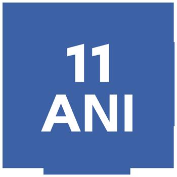 11 ani